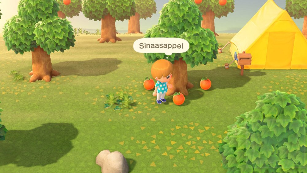 Animal Crossing New Horizons Fruit oprapen
