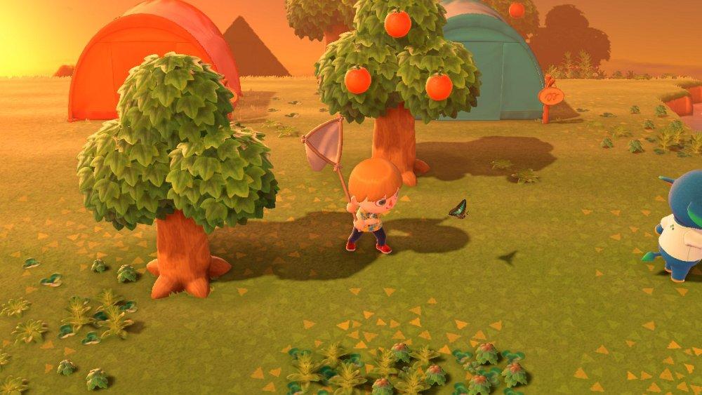 Animal Crossing New Horizons insecten vangen