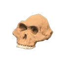 Animal Crossing New Horizons australopithecus