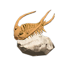 Animal Crossing New Horizons trilobiet