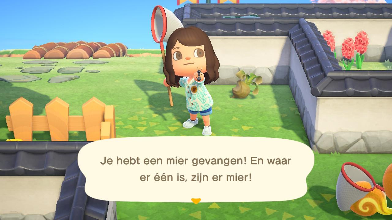 Mier Animal Crossing New Horizons